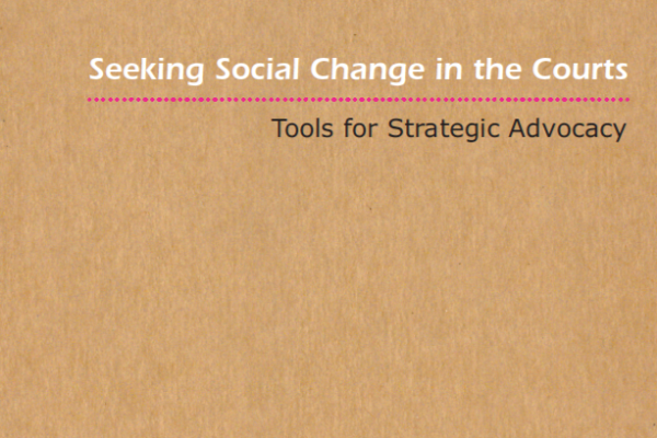 Seeking Social Change in the Courts: Tools for Strategic Advocacy
